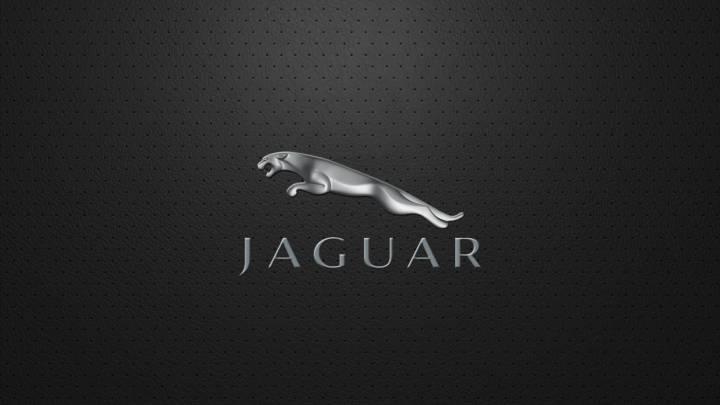 Обои картинки фото ягуар jaguar логотип